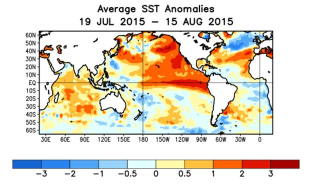 Average SST Anomalies Jul 19 - Aug 15 2015